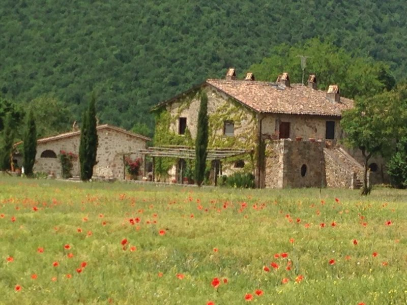 Agriturismo Cardito, location de vacances à Posta