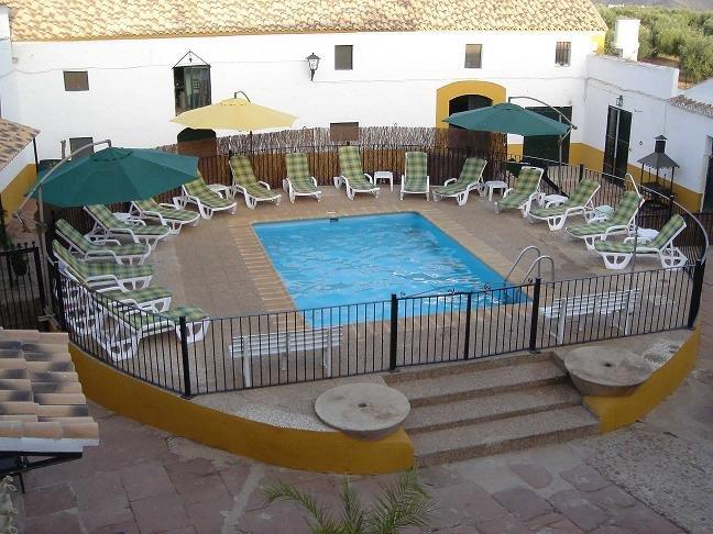 Vista de zona de baño con piscina y tumbonas.
