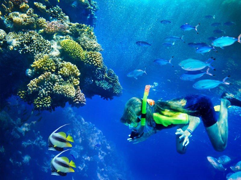Snorkling in Palomino island/activities in the area