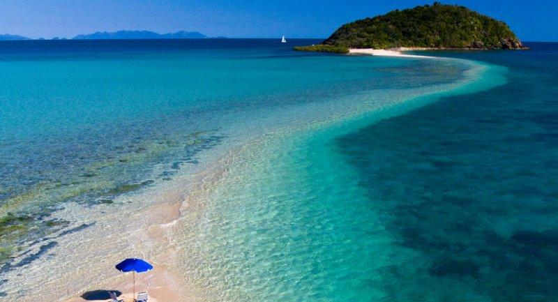 Palomino Island/activities in the area