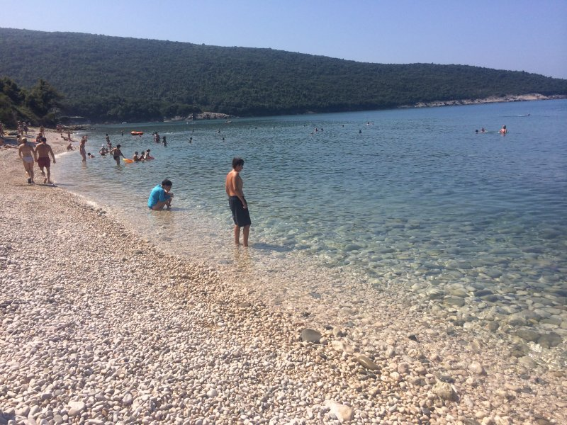 Vukovic Paradise, holiday rental in Donji Stoj