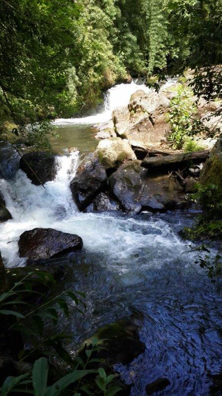 Profitez de la rivière à la propriété!