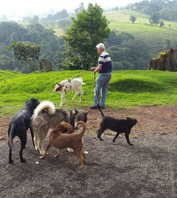 Guillermo et ses animaux de compagnie!