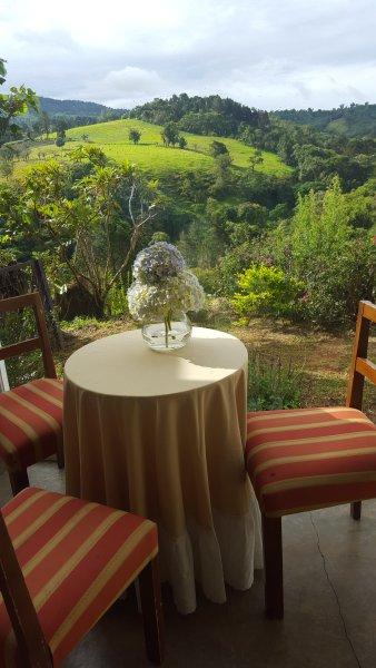 Profitez d'une tasse de café avec ces vues en regardant les colibris COLIBRI