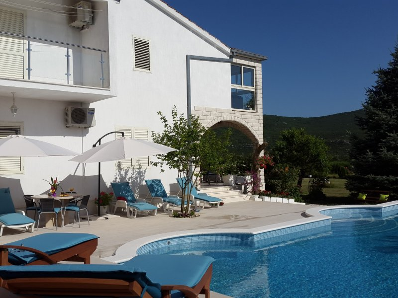 VILLA ALMAS with swimming pool, vacation rental in Donje Ogorje