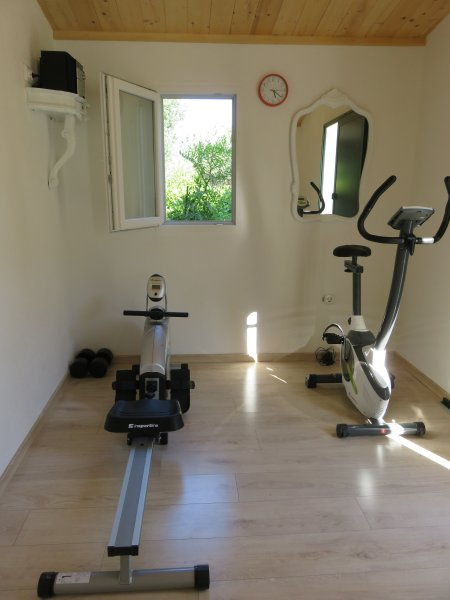 A small newly-built gym in the backyard