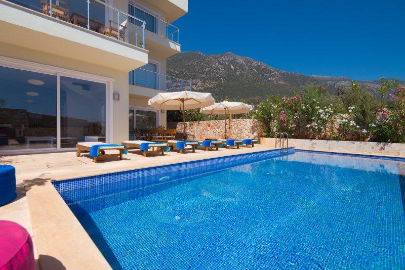 Grande piscina privata con vista sulle montagne. Un sacco di lettini!