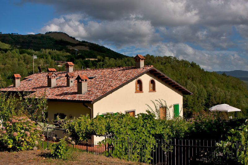 Casa Albinelli, holiday rental in Abetone