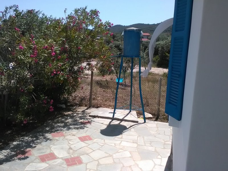 Our solar shower in the front yard.