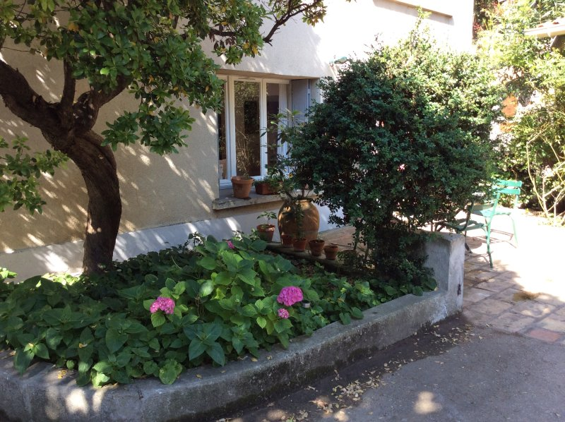 special  nimes avec piscine, holiday rental in Nimes