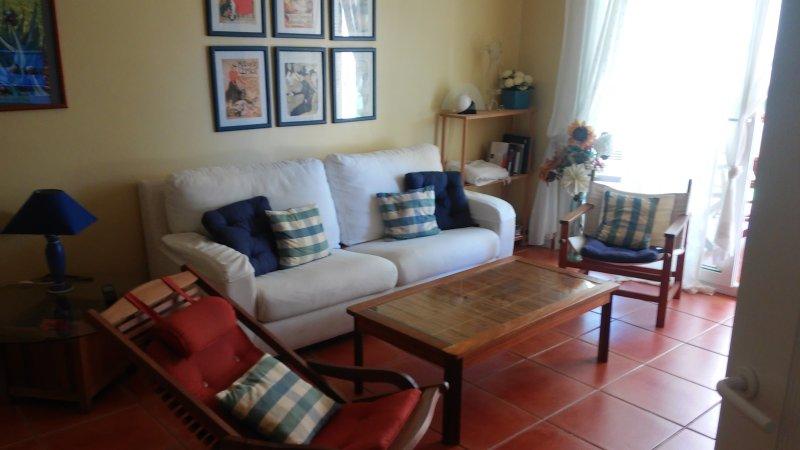 Salón de 25 m2, acceso a zona ajardinada, muy fresco y tranquilo. muy luminoso