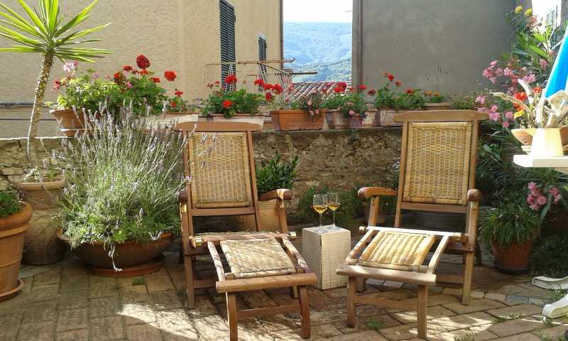 Beautiful and relaxing home Dimoratoscana with 2 rooms: №1 'Patrizia' and №2 'Lilly', location de vacances à Seggiano