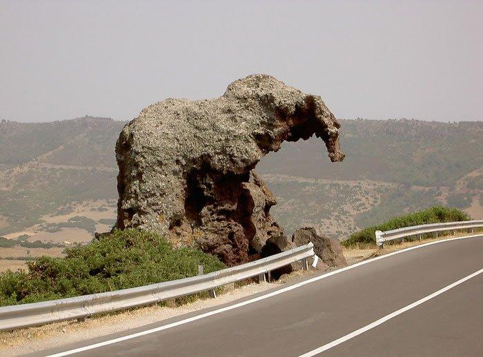 Ελέφαντας ροκ!