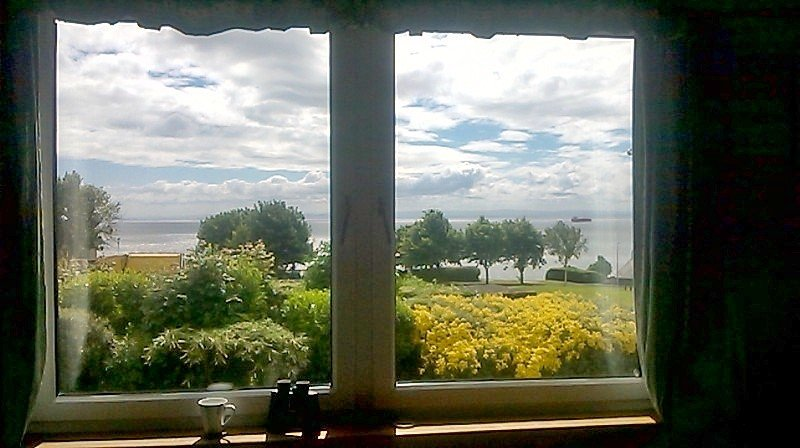 A view whilst sitting on an armchair in the lounge. A fine day in July 2016.