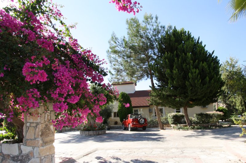 Alonia Villa, holiday rental in Avdimou