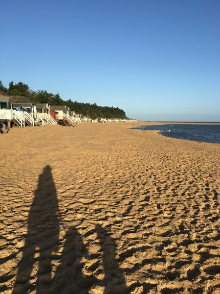 Close to miles of dog-friendly sandy beach