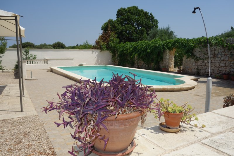 Villa Maresca, Pool, Sleeps 8, close to Beaches, vacation rental in Specchiolla