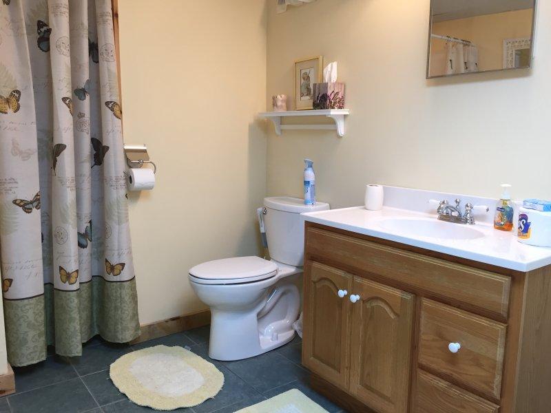 Bathroom on lower floor