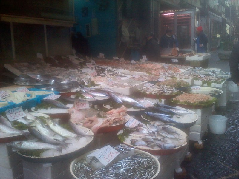 Typical fish market