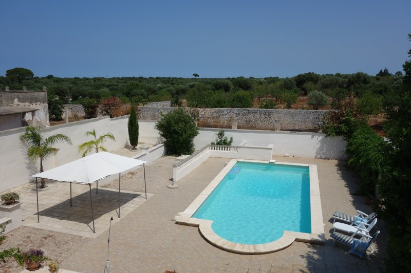 Pool area and olive groves down to the Adriatic coastline