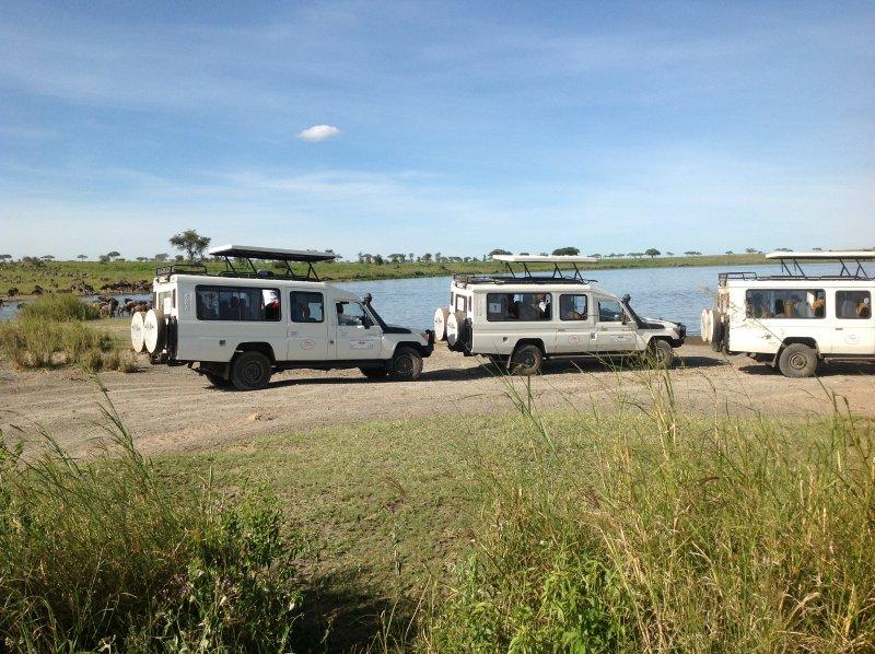 Dallago Tours Kenya Tanzania, vacation rental in Kikuyu