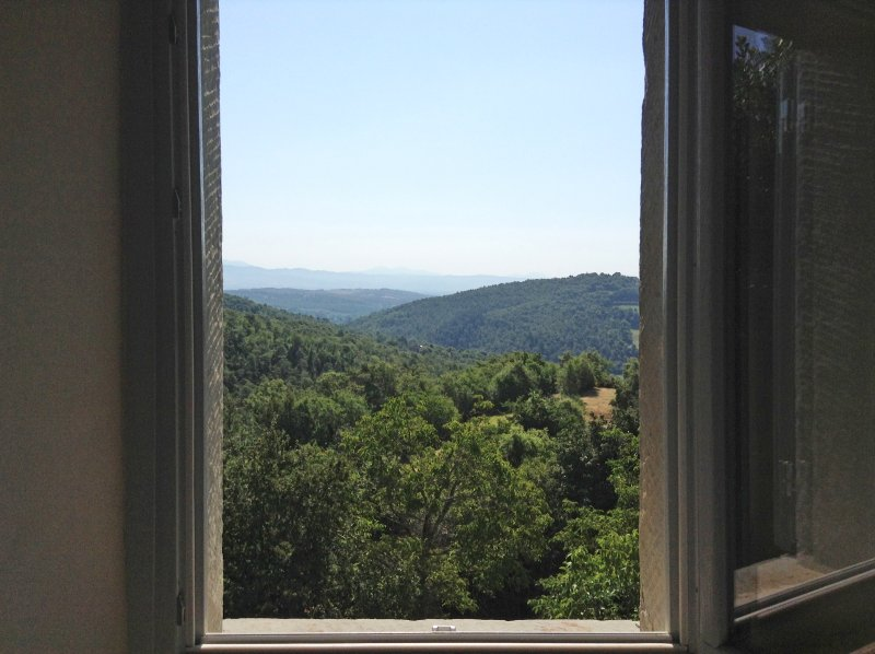 View from a window on the east side