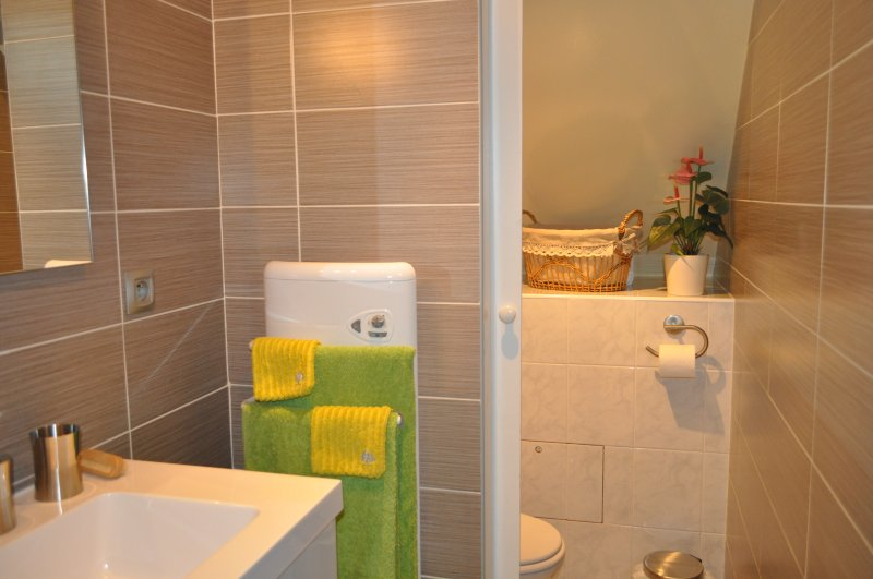 Shower room and separate WC adjoining the bedroom