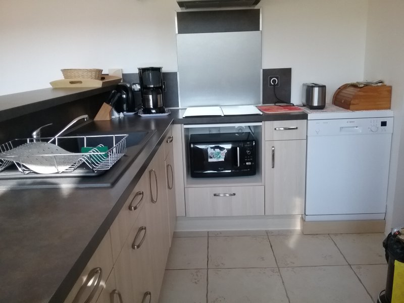 kitchen / Plate induction / Fan / Dishwasher, oven multifunction / microwave ....