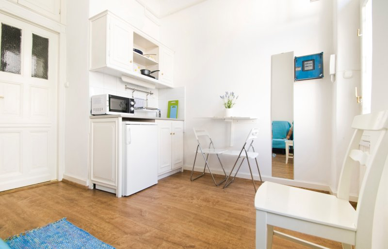 Peaceful studio in Budapest center just behind Liszt Ferenc Sq, alquiler vacacional en The Republic of Zubrowka
