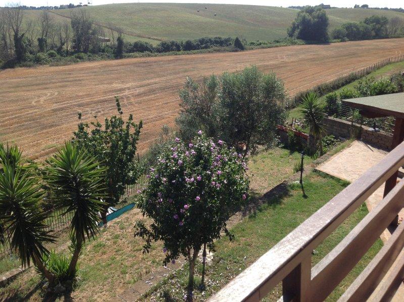 Jardín de la propiedad 'y vistas