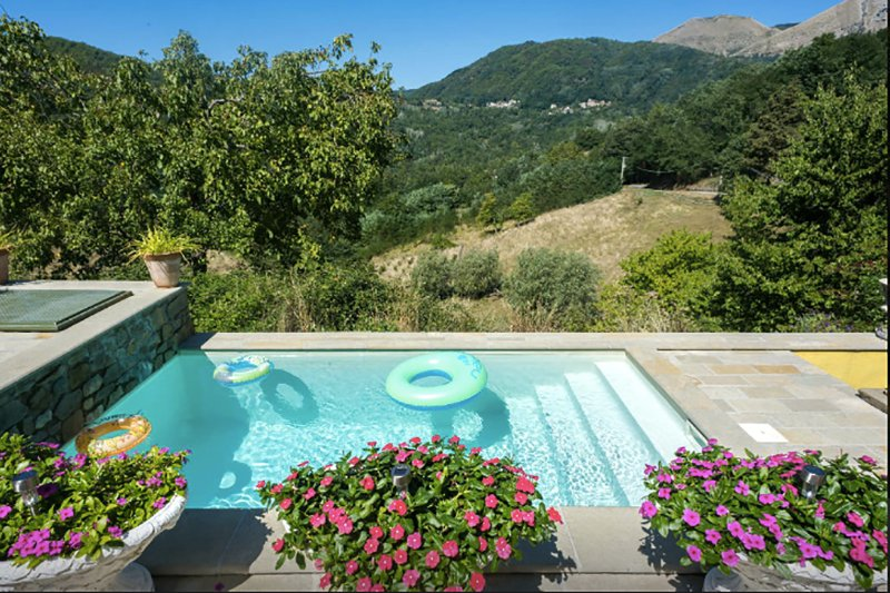 Villa with private plunge pool & stunning views, holiday rental in Bagni di Lucca