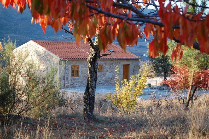 Quinta do Seixo-Casa da Carriça perto da Guarda, casa vacanza a Lajeosa do Mondego