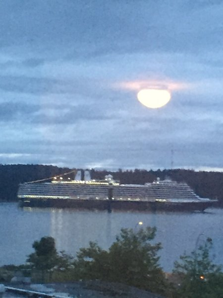 Often times your evening view is enhanced with a Cruise Ship passing by
