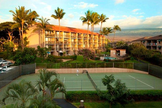 Tennis Court,Palm Tree,Tree,Building,Villa