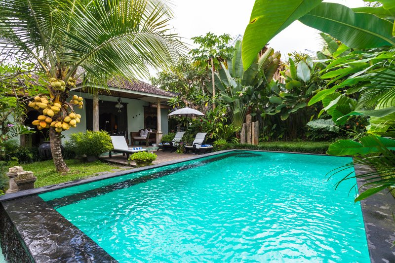 Rumah Sawah Kita (Our Rice-field House), vakantiewoning in Ubud
