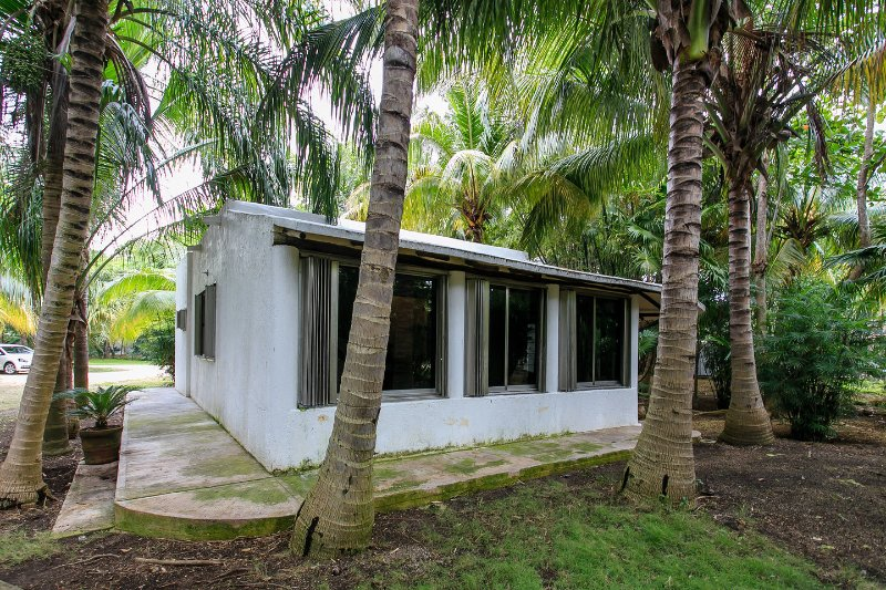Palm trees surround our air conditioned, enclosed porch