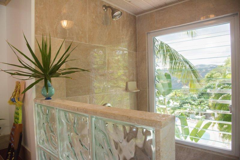 Suite de papaya ducha con vistas a la piscina