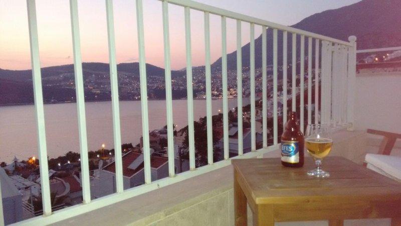 holiday rental villa with stunning views