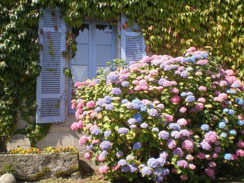 Une Chambre en Bretagne, chambre d'hôtes de charme, holiday rental in Merdrignac