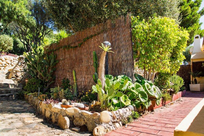 Alchimissa garden