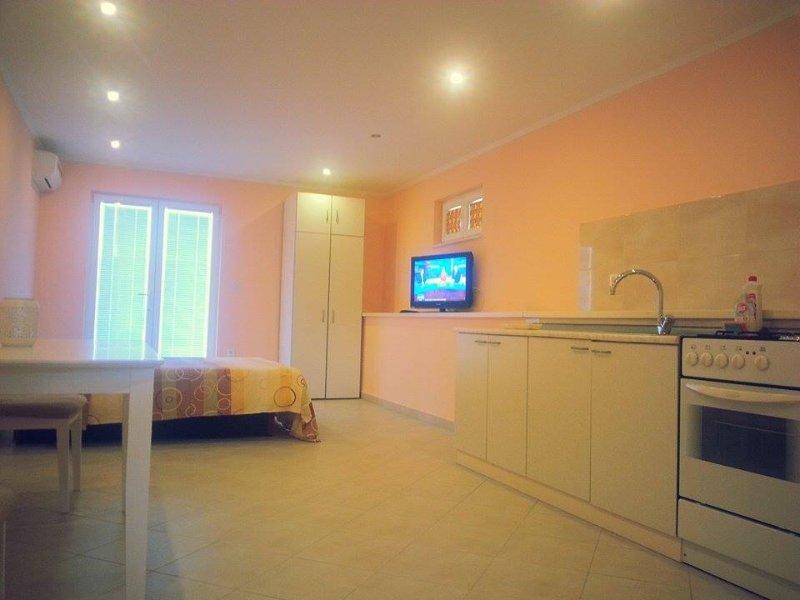 Studio apartment with kitchen, flat tv