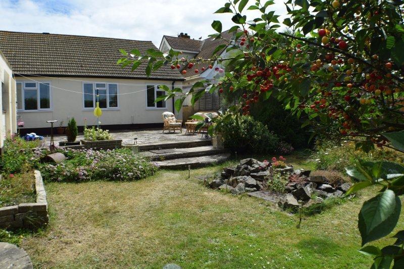 Back garden and patio area