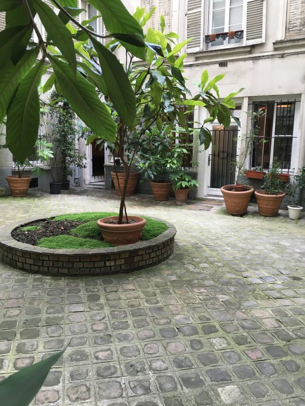 windows facing the courtyard.