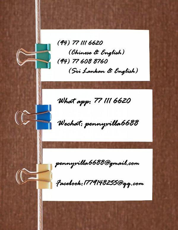 Penny Villa contact
