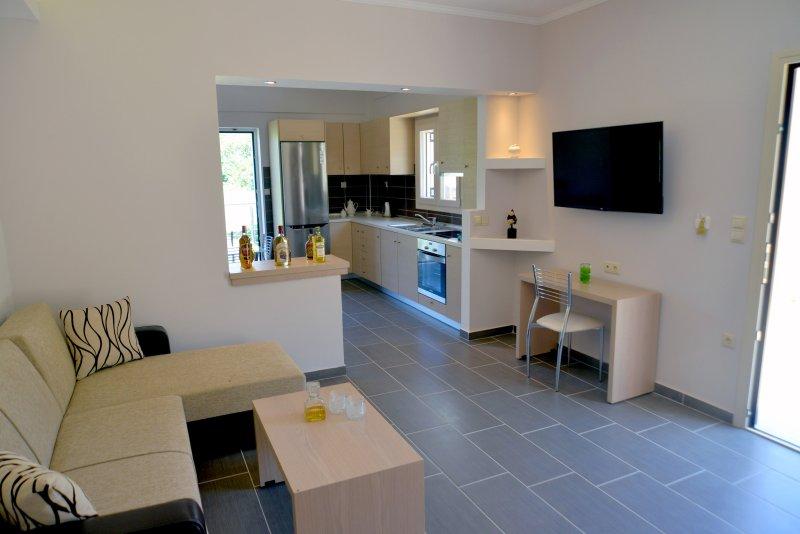 luxury apartment no 34 living room