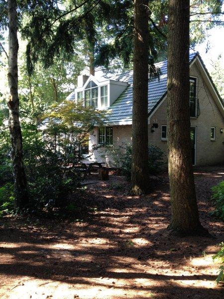 El lado posterior de la casa. Como se puede ver: en el bosque.