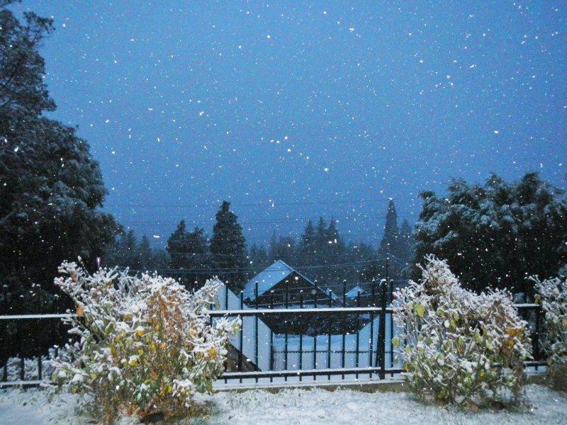 Bariloche, casa con vistas, cálida y práctica, holiday rental in San Carlos de Bariloche