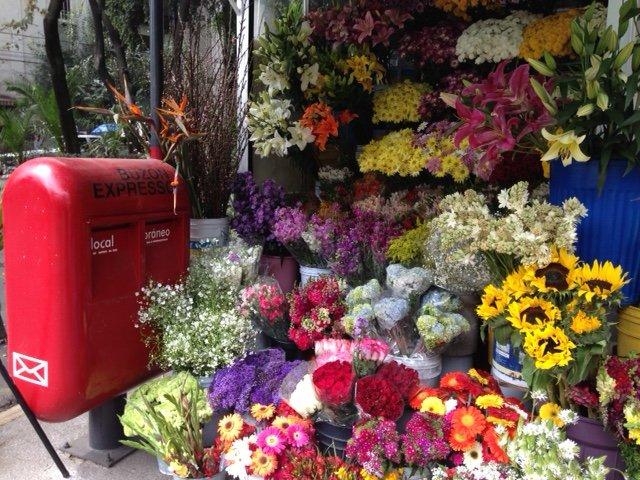A corner in Condesa