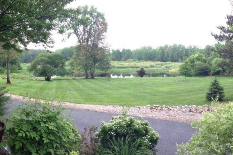 Vista desde el patio del patio y el estanque