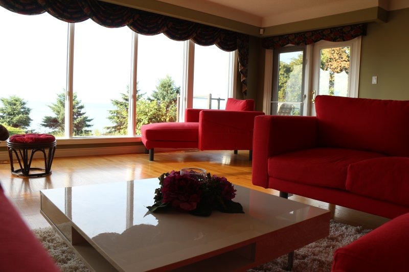 Living Room (main level)